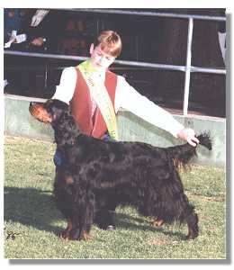 Trent winning Junior Handlers at the Royal Melbourne Show